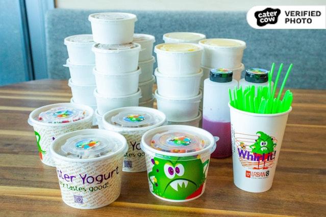 Monster Yogurt's DIY Frozen Yogurt Bar